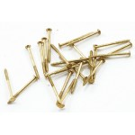 Brass nails, 3/8 inch 100 pack